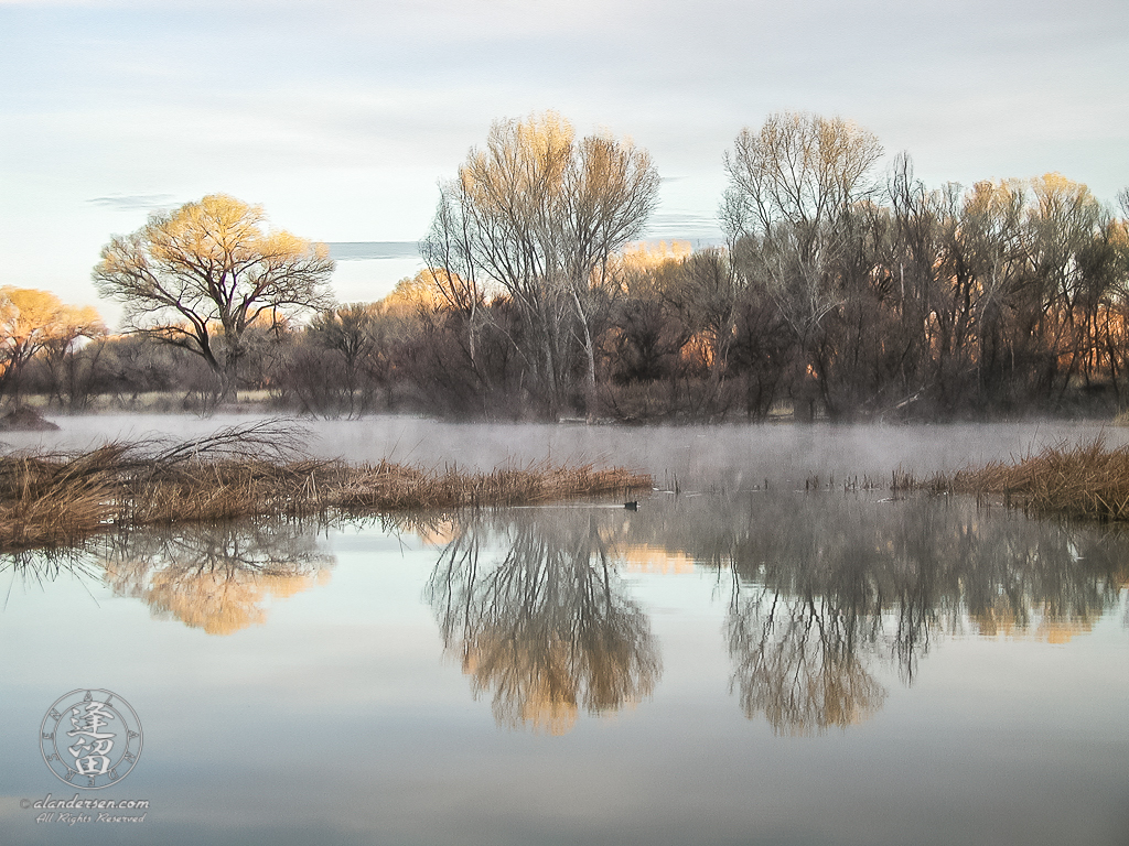Early morning Winter mists swirling on pond.