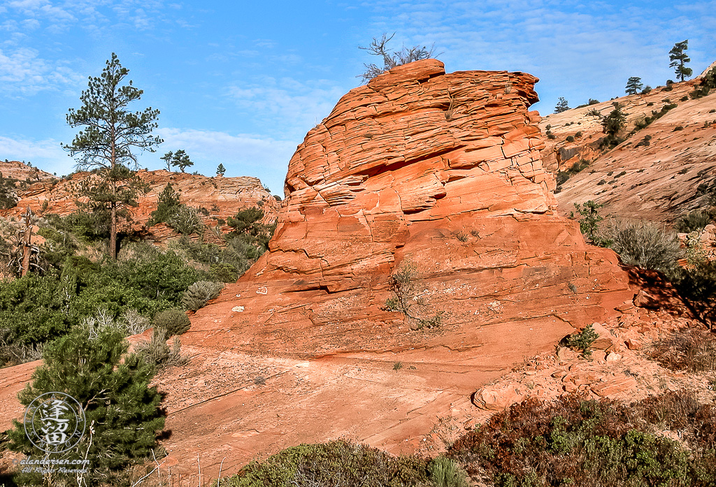 "Red sandstone feature from upper east ""slick-rock"" area of Utah's Zion National Park."