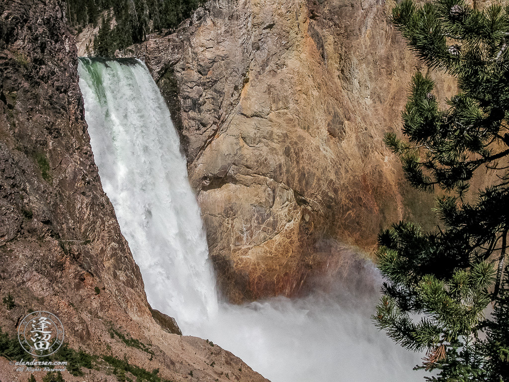 Yellowstone's Lower Falls as seen from platform at bottom of Uncle Tom's trail.