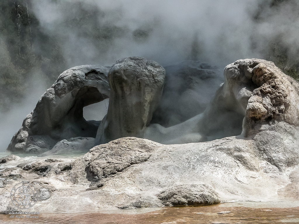 Steam rising from Grotto Geyser in Yellowstone National Park.