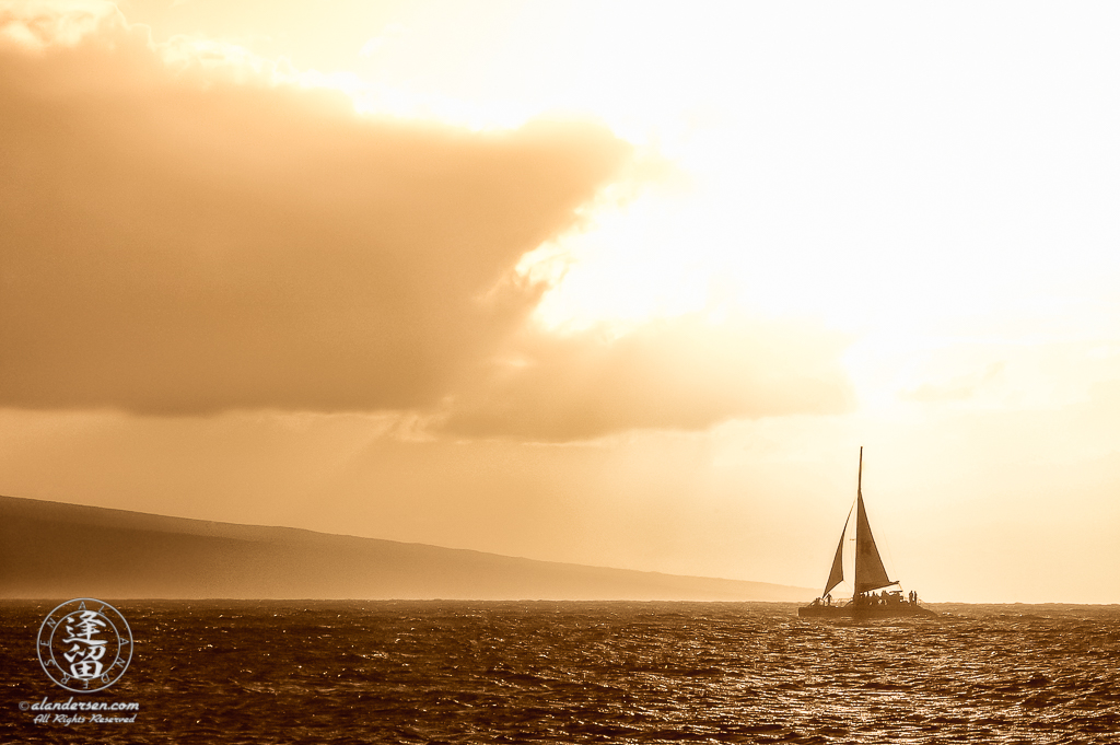 Catamaran sailing on a shimmering golden ocean at sunset.