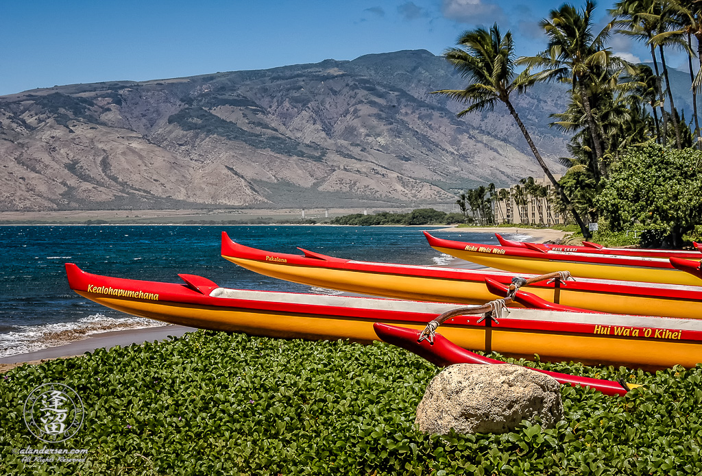 Red and gold canoes of Kihei Canoe Club lined up on beach.