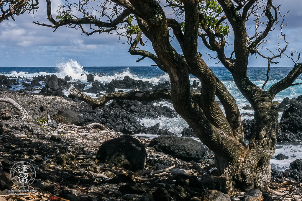 Waves crashing into jagged black lava rocks on beach at Ke'anaei.