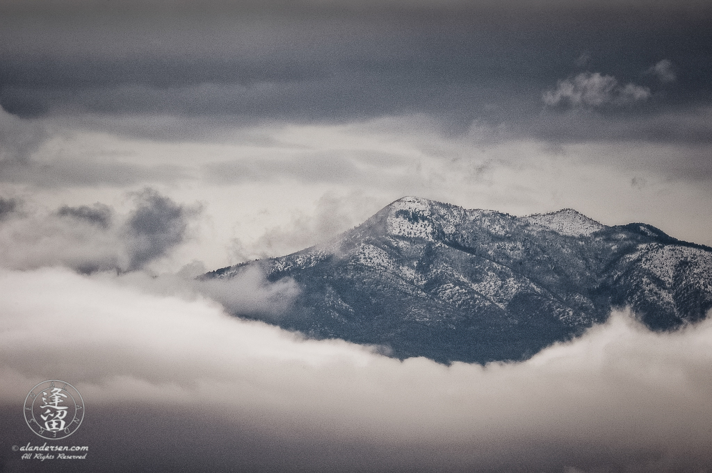 Snow-covered Carr Peak peering out of cloud embankment.