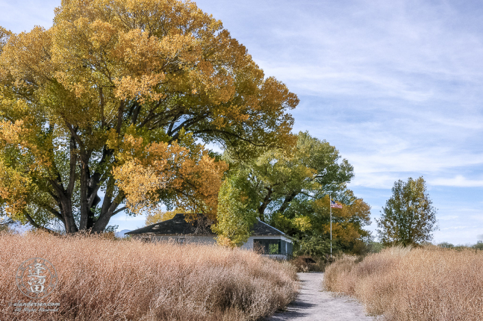 San Pedro House flanked by large Cottonwood trees.
