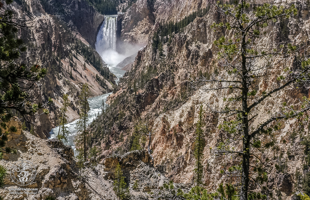 Yellowstone River cascading into Yellowstone National Park's Grand Canyon at Lower falls.
