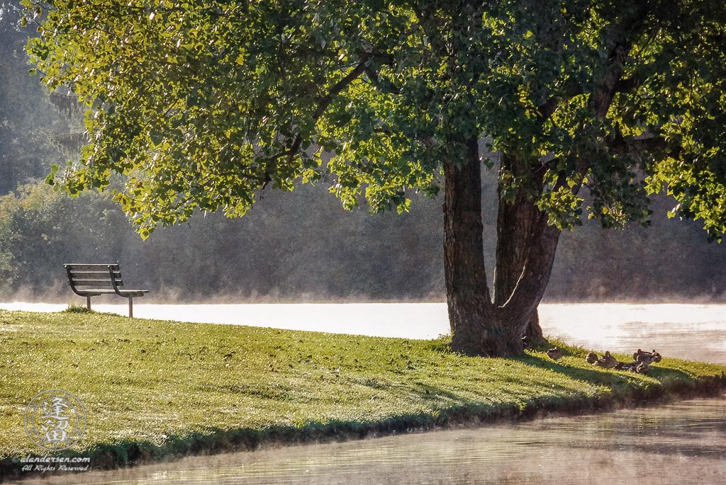 Morning mist rising from lake at Hudson Springs Park.