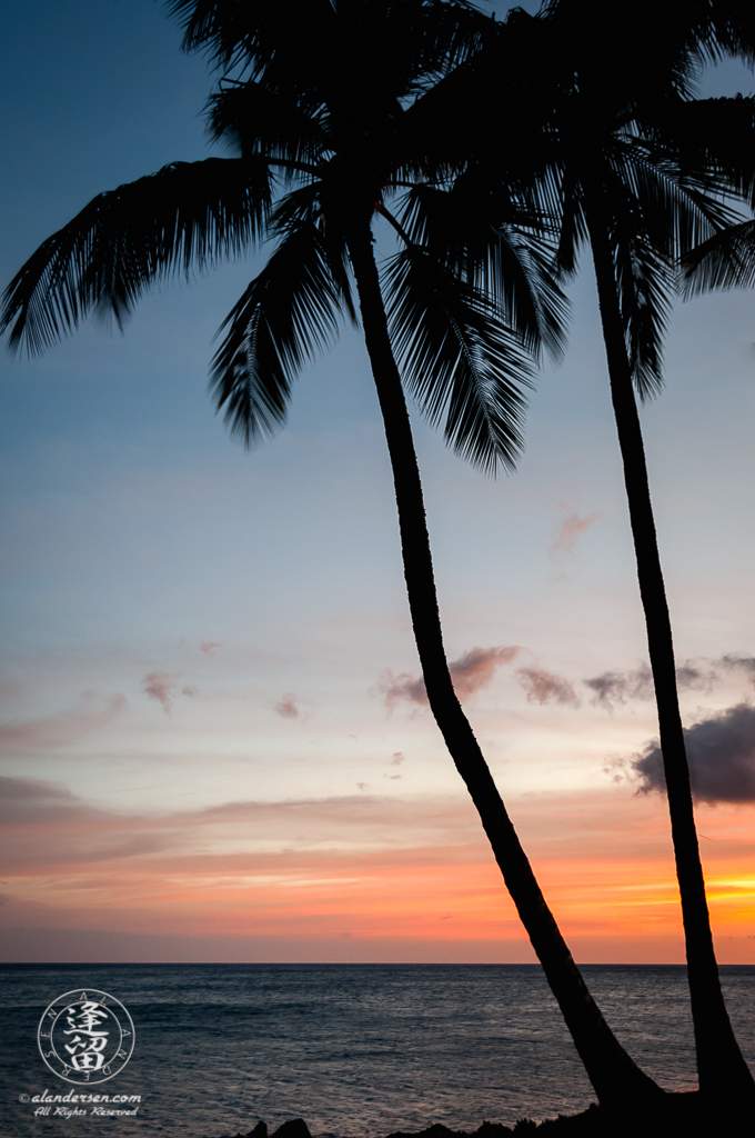 Palm trees standing in silhouette at twilight before remnants of Hawaiian sunset.