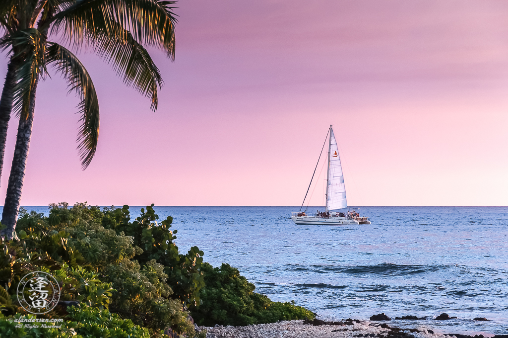 Catamaran traversing blue ocean during soft pink sunset.