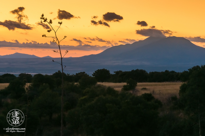 Pre-dawn in Southeastern Arizona near the international border with Mexico. The distant peak is San Jose peak near Naco, Mexico.