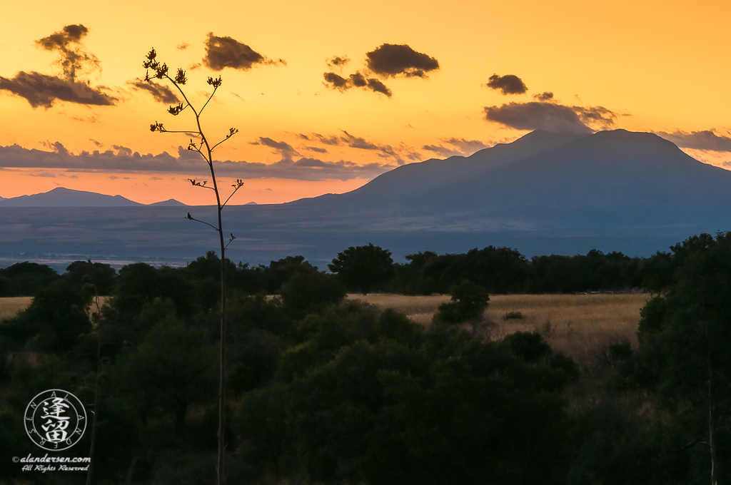 Pre-dawn in Southeastern Arizona near the international border with Mexico. The distant peak is San Jose peak near Naco, Mexico.