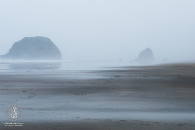 Wet foggy morning at Tolovana Beach State Recreation Site.