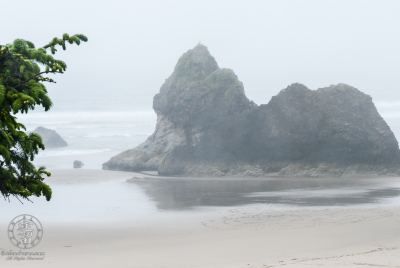 rock formation and mist at Arcadia Beach State Recreation Site.