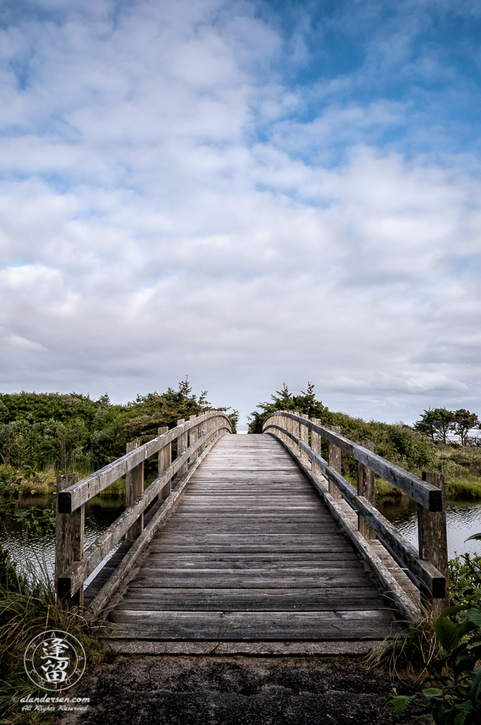 Wooden foot bridge providing access to beach at Ona Beach State Park.