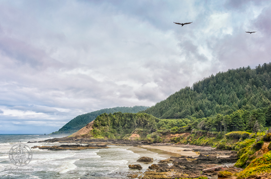 Two seagulls flying over rocky shoreline by Neptune State Scenic Viewpoint.