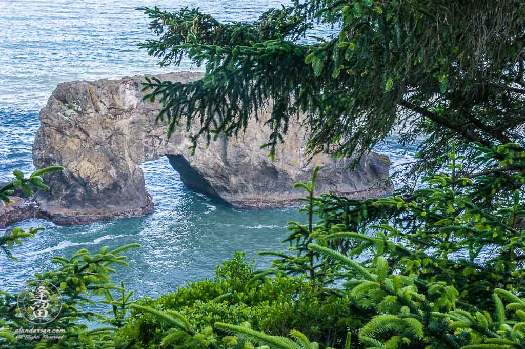 Arch Rock framed by evergreens at Arch Rock Roadside Viewpoint.