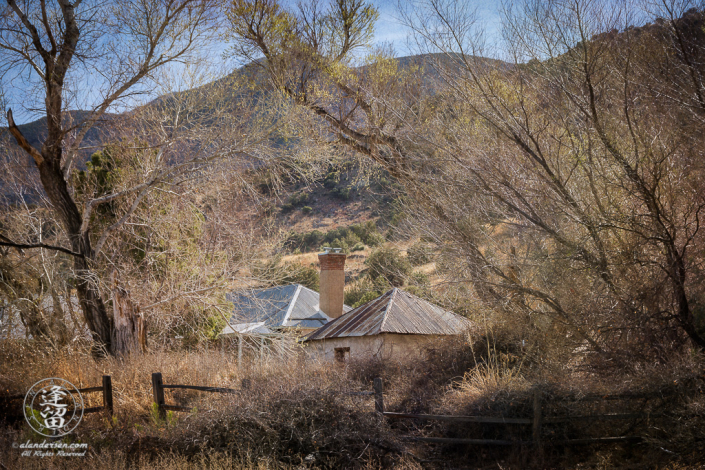 Brown Canyon Ranch framed by bare trees on a sunny Winter day.