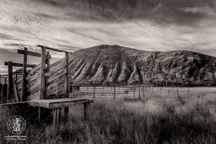 Wooden cattle loading chute and metal pens in hilly grasslands.