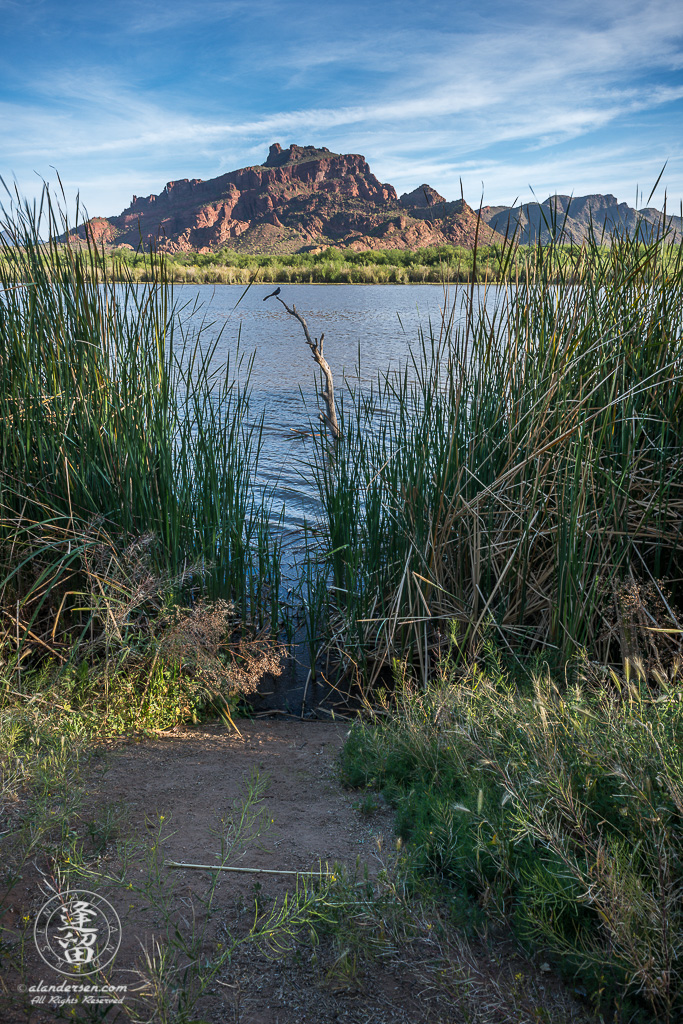 Early morning by Red Mountain and Salt River.