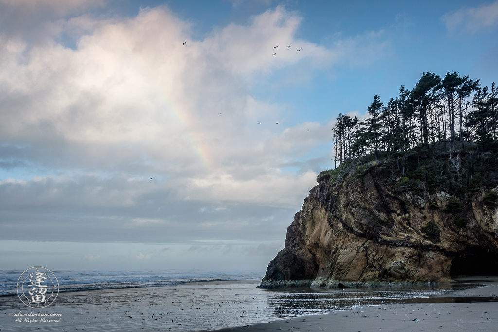 Rainbows and seagulls on a sunny moring at Hug Point State Park near Cannon Beach in Oregon.