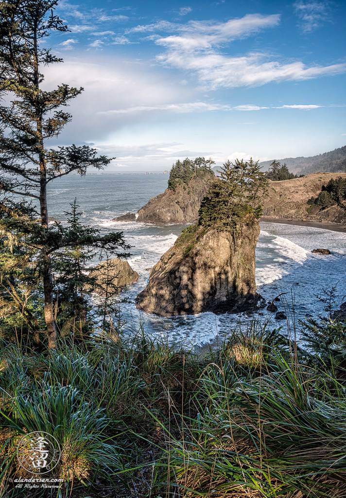 The sea stacks at Arch Rock Roadside Viewpoint near Brookings in Oregon.