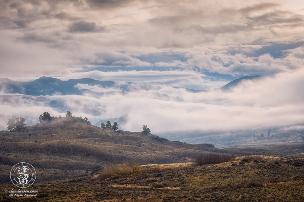 Lamar Valley filled with clouds on a cold wet Autumn morning.