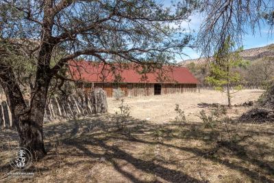 Atockaded barn at historic Camp Rucker seen from beneath trees.