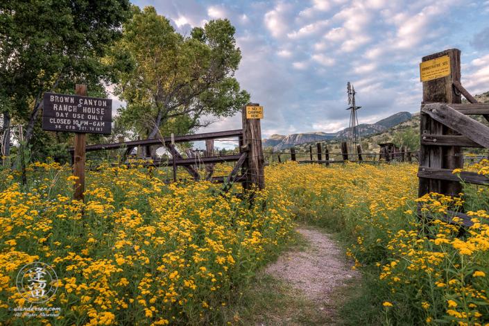Beautiful Summer morning at Brown Canyon Ranch in Southeastern Arizona.