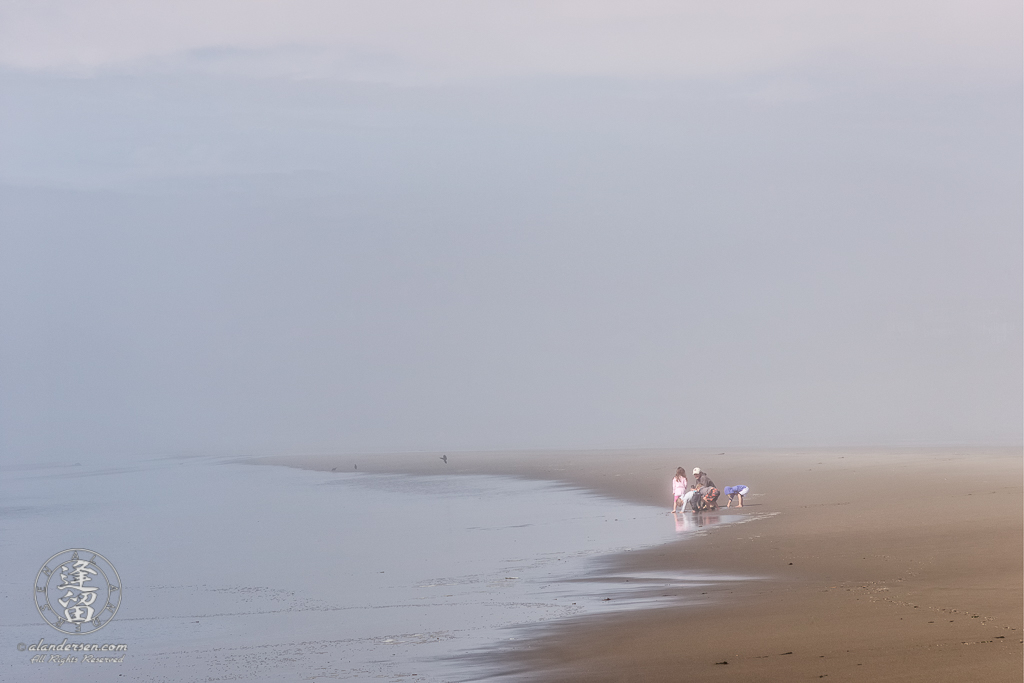 Children exploring the wonders of the beach with their father on a foggy afternoon at Bandon in Oregon.