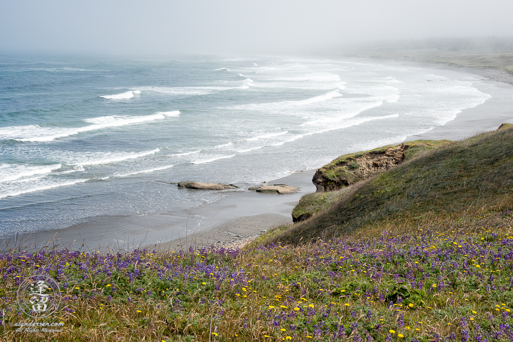 Morning fog is just starting to lift on this beautiful June morning at Kellog Beach, by Point St. George outside of the Northern California town of Crescent City.