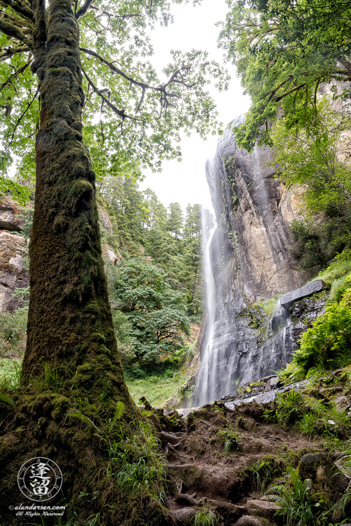 A view from the bottom of Silver Falls, at Golden and Silver Falls State Natural Area near Allegany in Oregon.