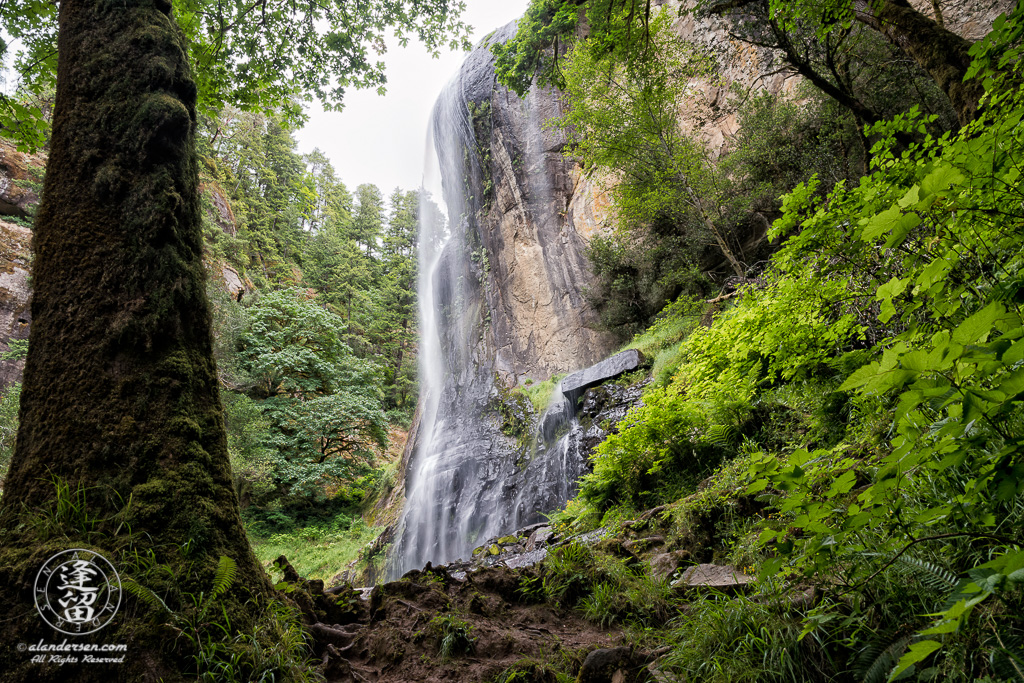 Scenic view from the bottom of Silver Falls, at Golden and Silver Falls State Natural Area near Allegany in Oregon.