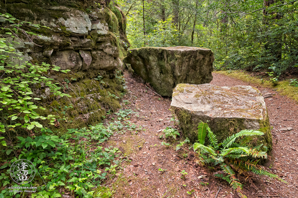 View of trail to top of Golden Falls at Golden and Silver Falls State Natural Area near Allegany in Oregon.