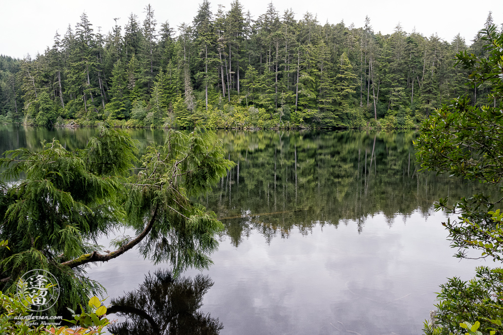 Cloudy morning at Lake Marie in the Umpqua Lighthouse State Park near Winchester Bay, Oregon.