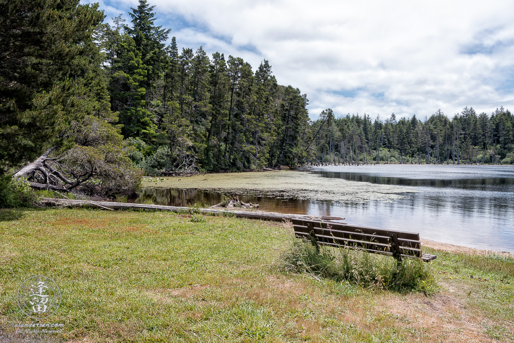 Scenic view of Lower Empire Lake at John Topits Park in North Bend, Oregon.