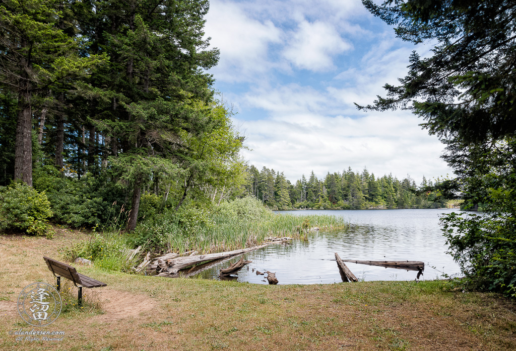 Scenic view of Middle Empire Lake at John Topits Park in North Bend, Oregon.