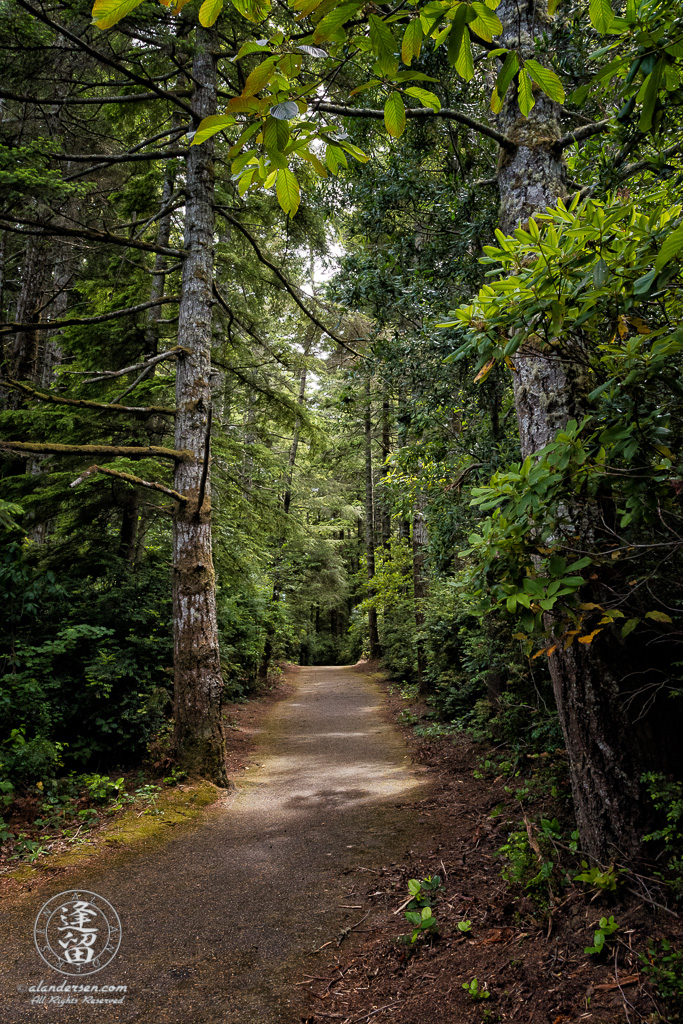 Paved trail that circumnavigates Lower Empire Lake at John Topits Park in North Bend, Oregon.
