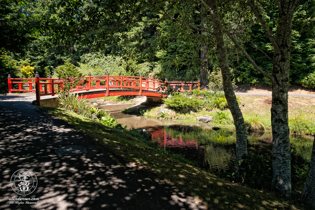 "Red Japanese ""Morning Song Bridge across Whispering Waters (creek)"" in Choshi Gardens at Mingus Park in Coos Bay, Oregon."