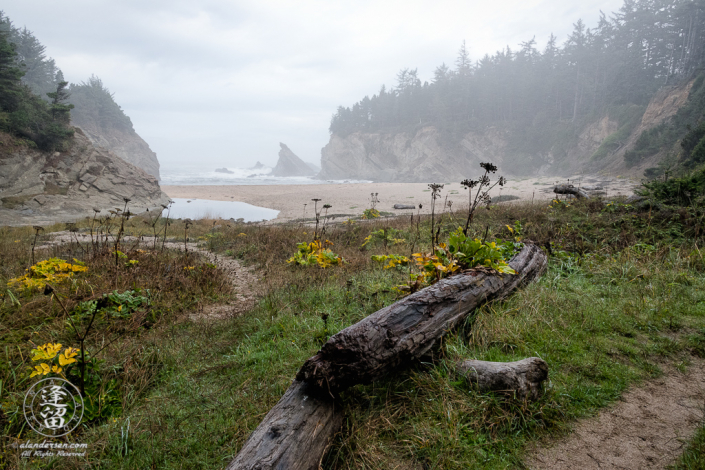 Secluded Simpson Beach on a wet and misty morning, just below Shore Acres State Park outside of Charleston in Oregon.