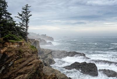 Cover image for Al Andersen Photography's Cape Arago, Oregon Gallery.