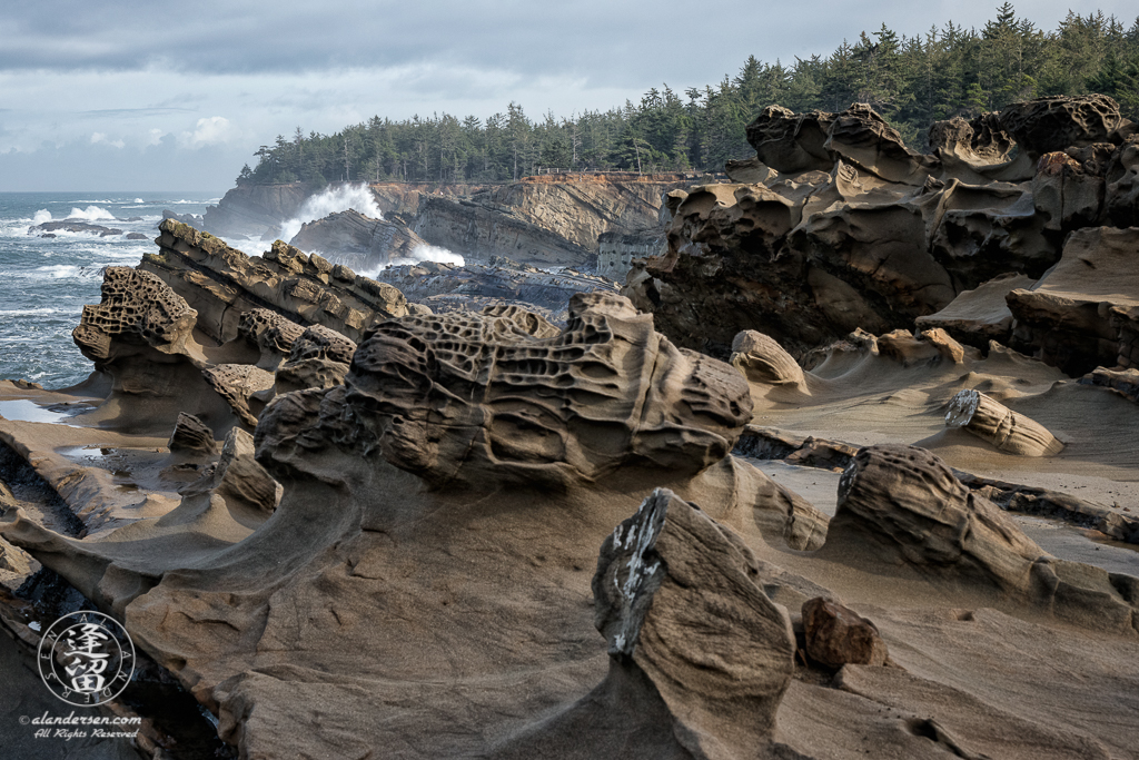 The amazing geology of the rugged cliffs at Shore Acres State Park outside of Charleston in Oregon.