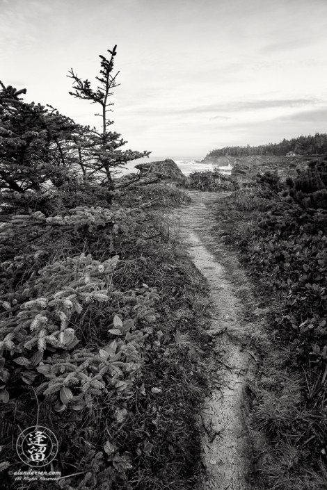 Pacific Coast Trail, looking North toward Shore Acres State Park outside of Charleston in Oregon.