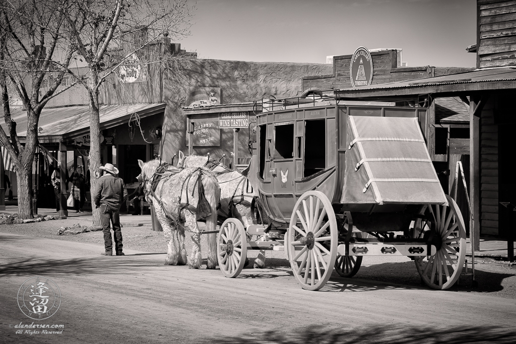 One of the stagecoach interpretive rides in Tombstone, Arizona, waiting for a fare.